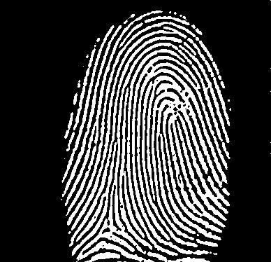 fingerprints1