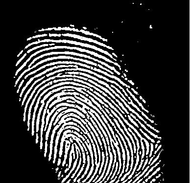 fingerprints2